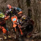 XL Race Rasa