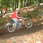 Schimmeldewog 2007